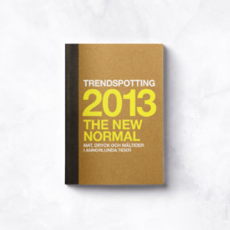 Trendspaning 2013